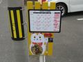 新潟保護猫カフェ「おっぽ」, #2