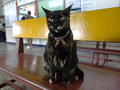 Cats of Houtong, #2353