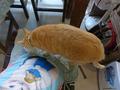 Cats of Houtong, Oreo@Catwalk219, #3216