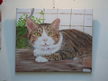 Cats Painting of Catwalk219, QQ, #3283