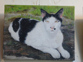 Cats Painting of Catwalk219, #3289