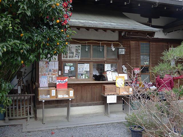 Cats of Kyoto, 梅宮大社, #3783