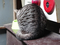 Cats of Kyoto, ツキ@梅宮大社, #3794