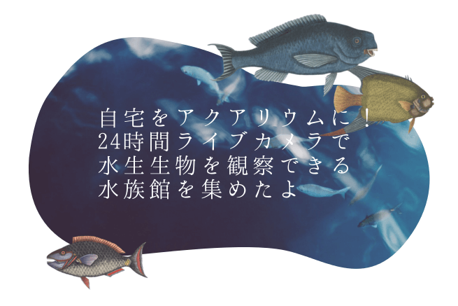 f:id:hiroseyonaka:20160126210110p:plain