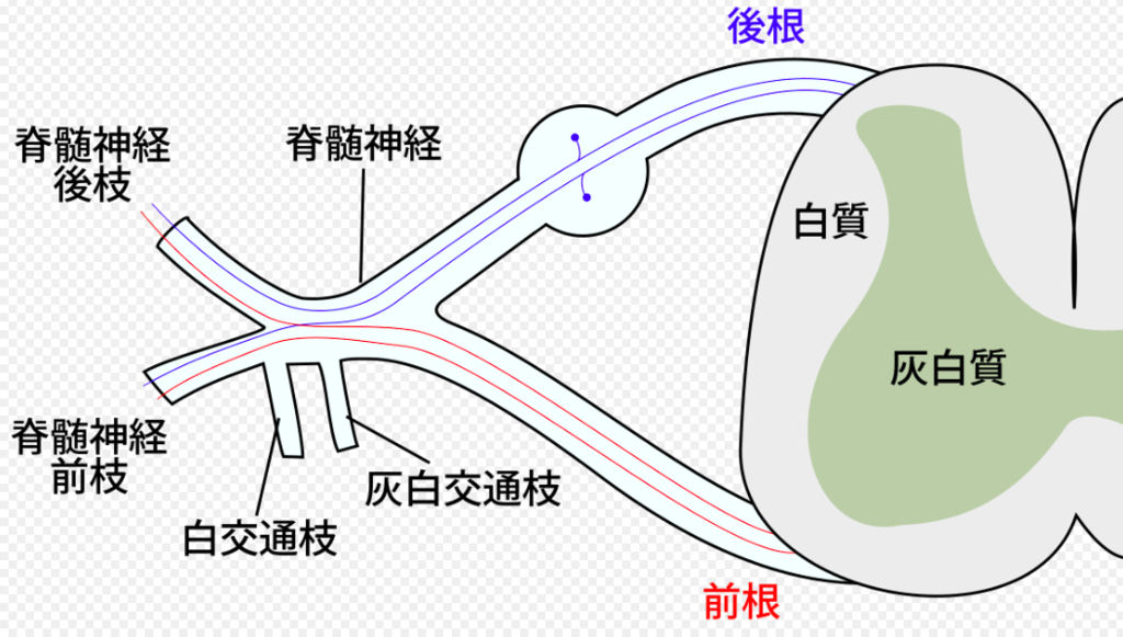 f:id:hiroshi-kizaki:20171011182153p:plain