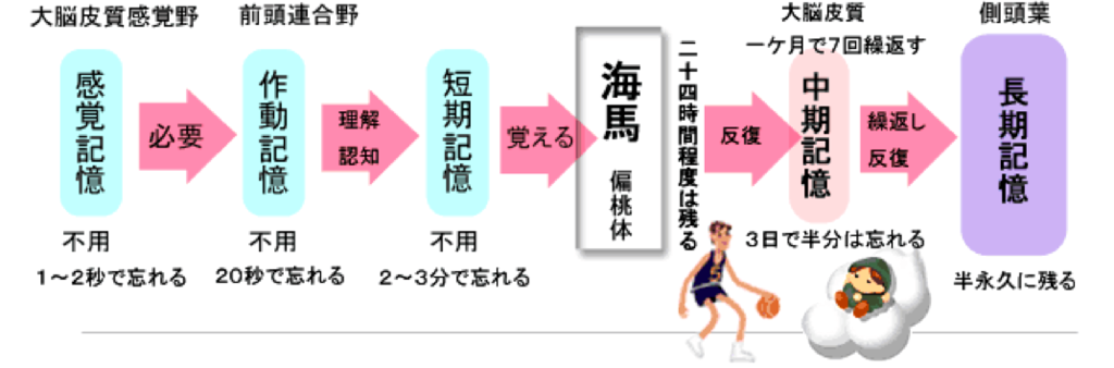 f:id:hiroshi-kizaki:20171011194432p:plain