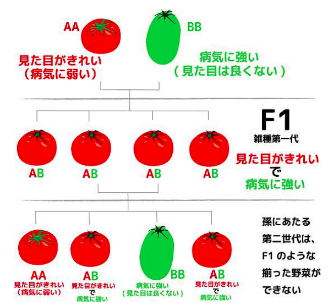 f:id:hiroshi-kizaki:20180719072928p:plain