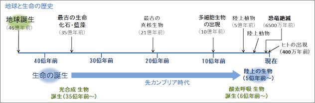 f:id:hiroshi-kizaki:20191123175232j:plain