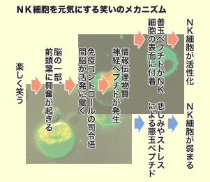 f:id:hiroshi-kizaki:20191130183423j:plain