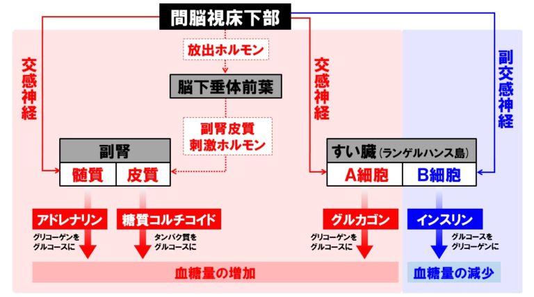 f:id:hiroshi-kizaki:20200206190113j:plain