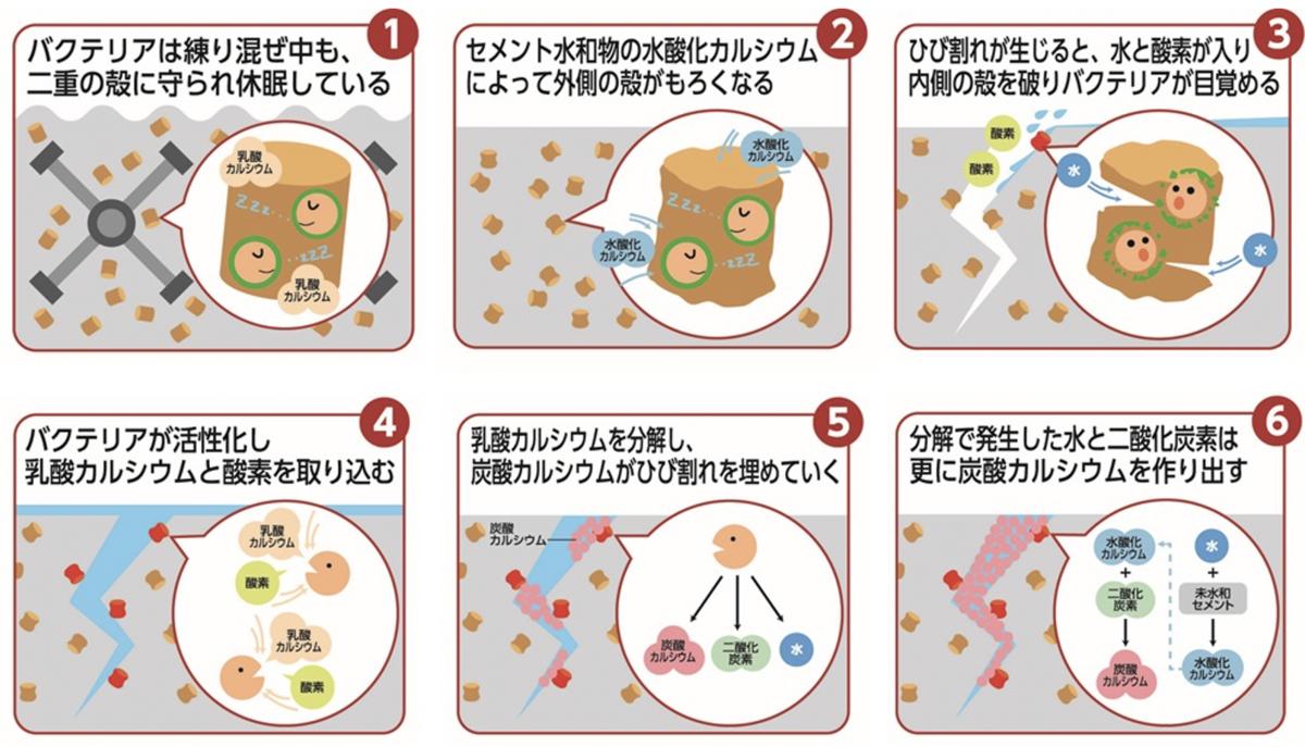 f:id:hiroshi-kizaki:20201214220254p:plain