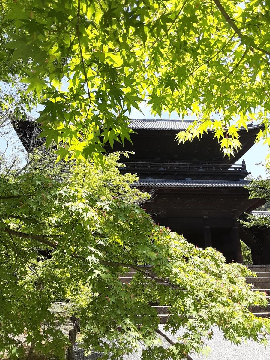 f:id:hiroshi0369:20210507115032j:plain
