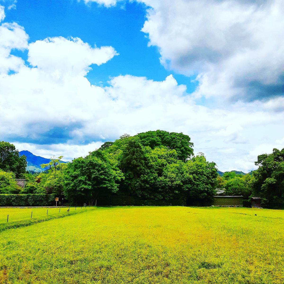 f:id:hiroshi0369:20210517114134j:plain