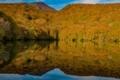 シンメトリーの蔦沼