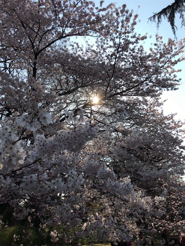 f:id:hiroshi6011:20170404174703j:image
