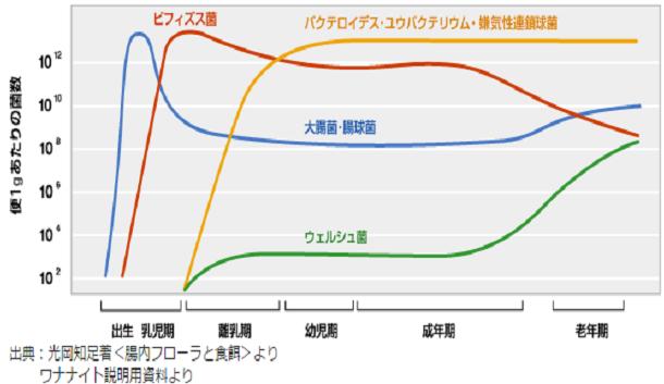 f:id:hiroshi999999999:20171106051241p:plain