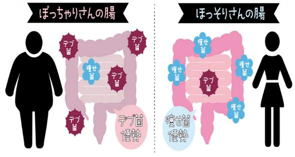 f:id:hiroshi999999999:20171106051405p:plain