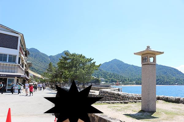 宮島海沿いルート