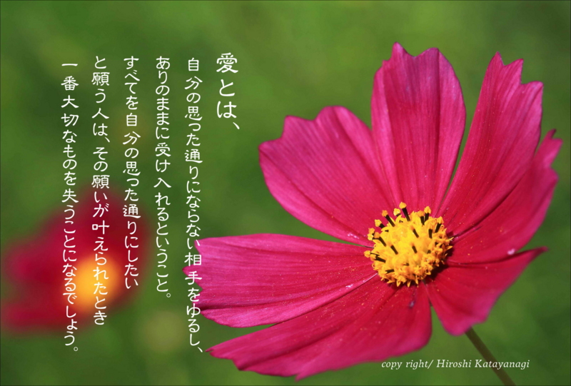 f:id:hiroshisj:20141020203910j:image