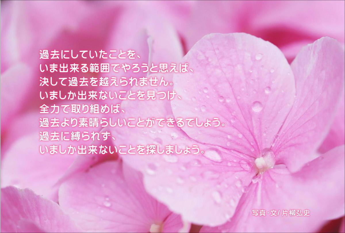 f:id:hiroshisj:20200623211148j:plain