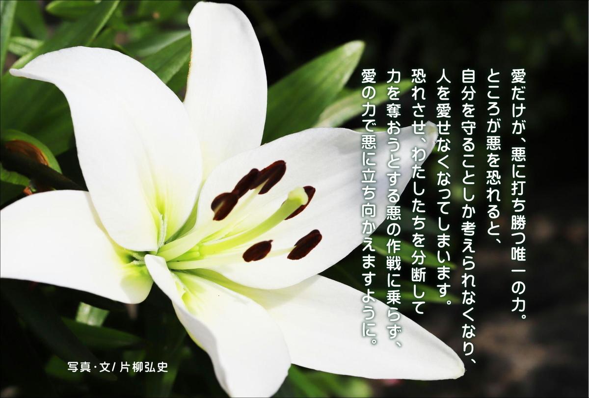 f:id:hiroshisj:20200701114849j:plain