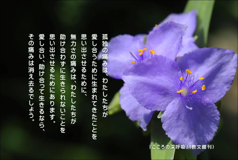f:id:hiroshisj:20210929152343j:plain