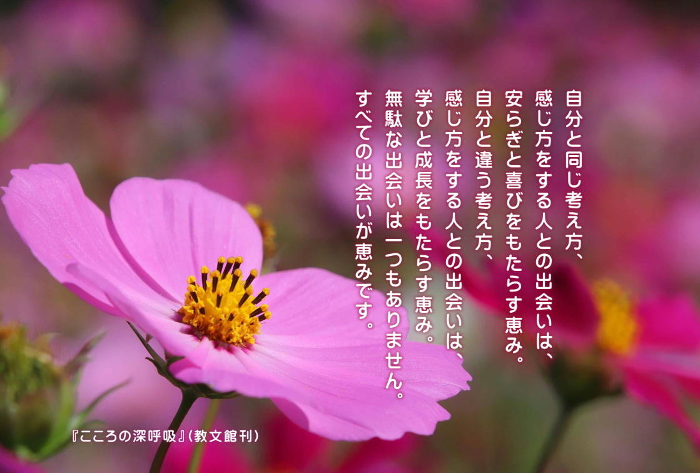 f:id:hiroshisj:20211020134510j:plain