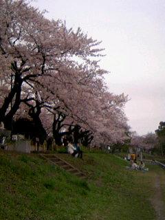 f:id:hirotaka72:20100404134808j:image