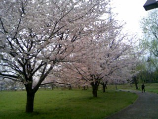 f:id:hirotaka72:20100410115135j:image