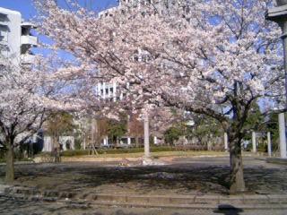 f:id:hirotaka72:20100410120959j:image