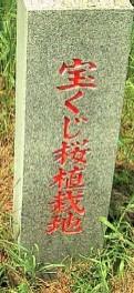 f:id:hirotaka72:20121110170001j:image