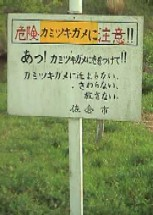 f:id:hirotaka72:20121110171115j:image