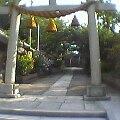 f:id:hirotaka72:20121111124927j:image