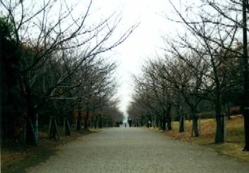f:id:hirotaka72:20130105185910j:image