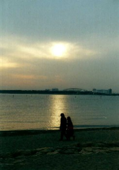 f:id:hirotaka72:20130105185914j:image