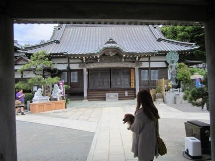 f:id:hirotaka72:20150524182748j:image:w200