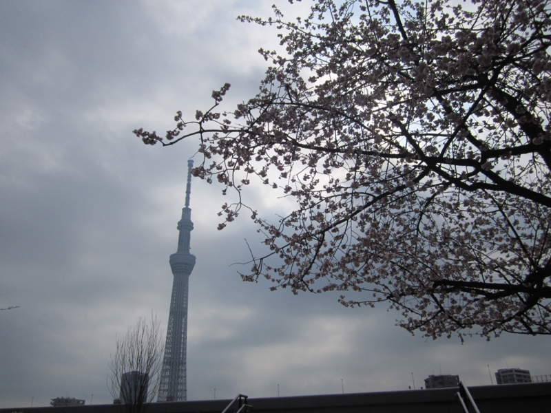 f:id:hirotaka72:20160305094227j:image:w600
