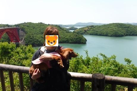 f:id:hirotaka72:20160430120533j:image:w300