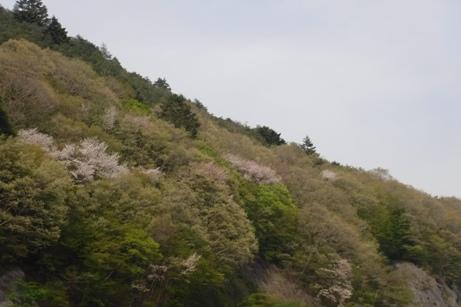 f:id:hirotaka72:20160502145608j:image:w300