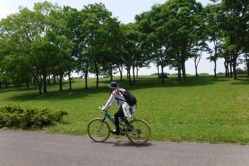 f:id:hirotaka72:20160514115738j:image:w603