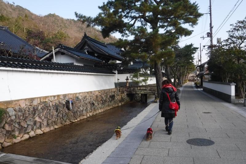 f:id:hirotaka72:20161209093846j:image:w300