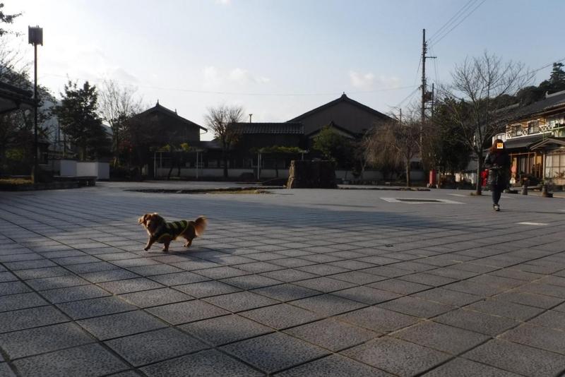 f:id:hirotaka72:20161209095109j:image:w415