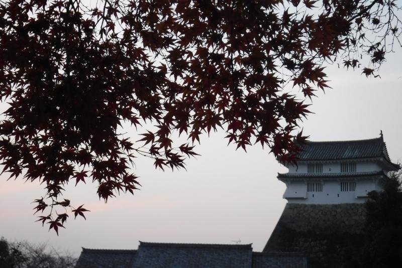 f:id:hirotaka72:20161209164454j:image:w300