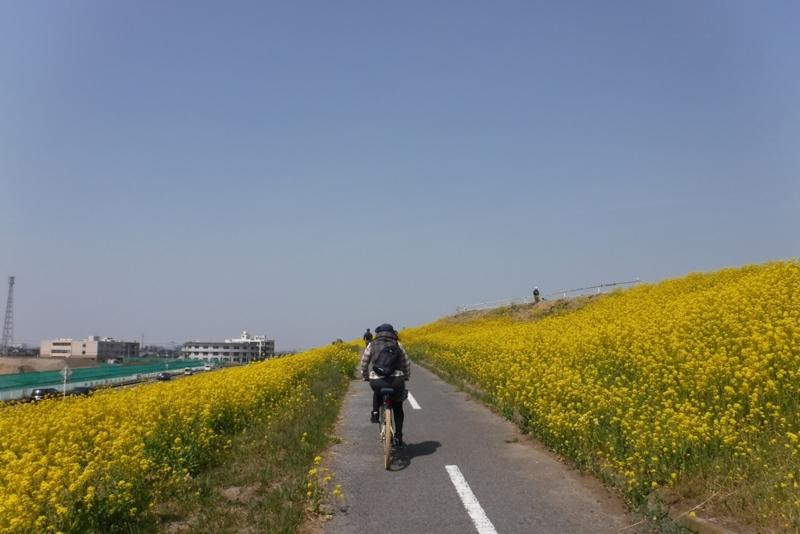 f:id:hirotaka72:20170320120214j:image:w300