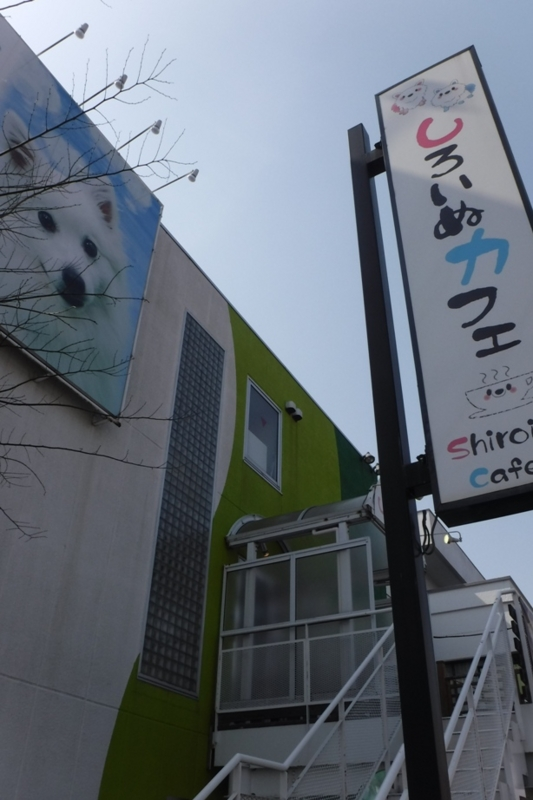 f:id:hirotaka72:20170320130530j:image:w185