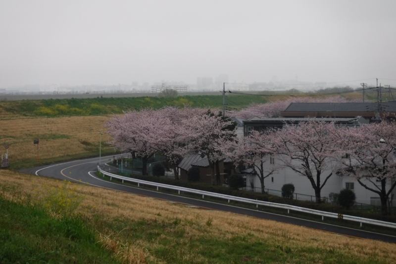f:id:hirotaka72:20170408150723j:image:w300