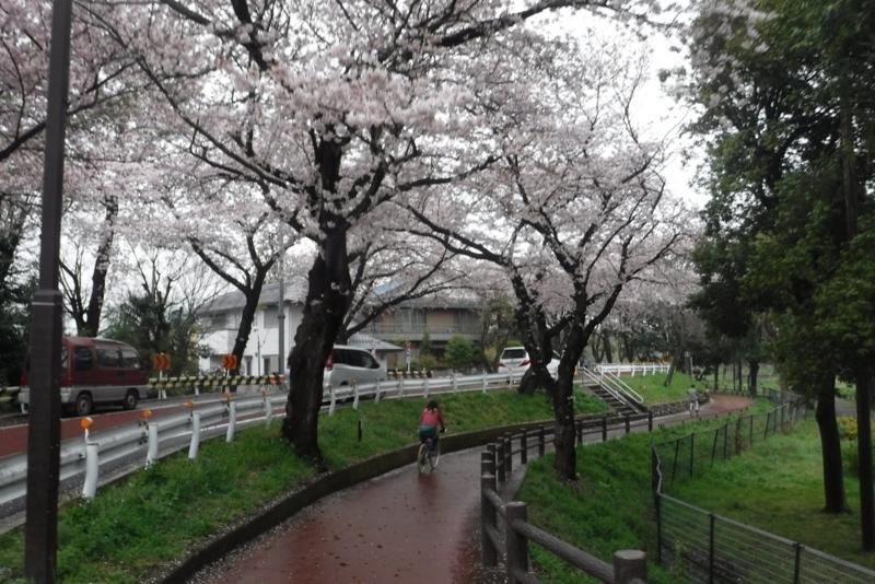 f:id:hirotaka72:20170408155922j:image:w300