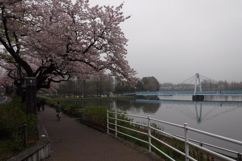 f:id:hirotaka72:20170408160133j:image:w415