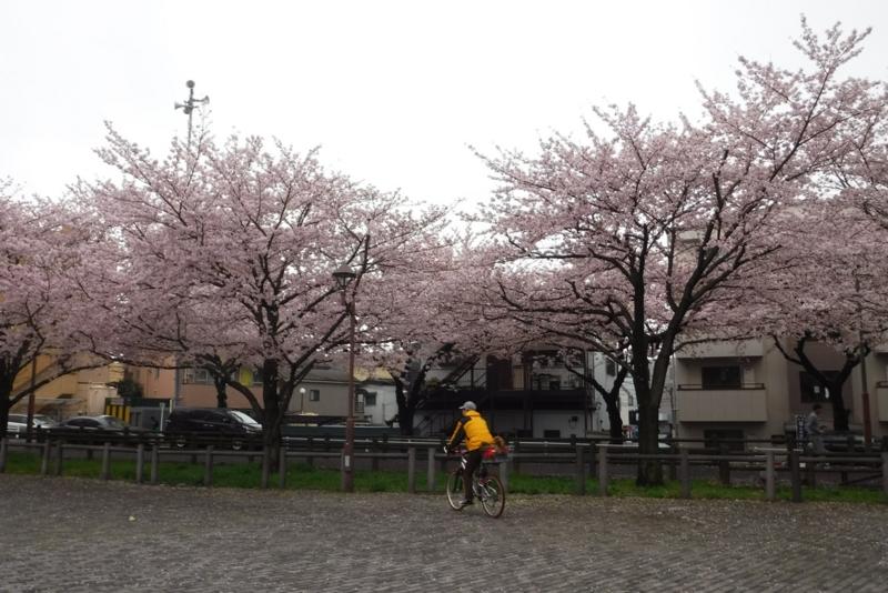 f:id:hirotaka72:20170408164552j:image:w603