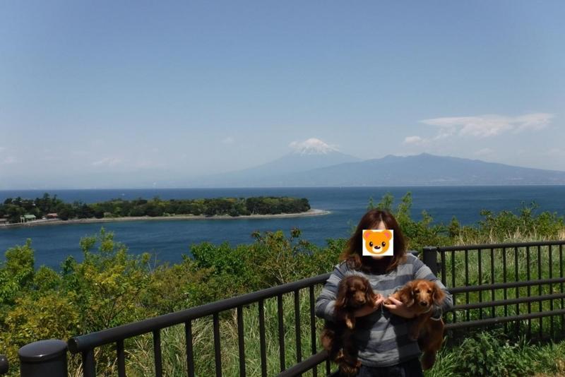 f:id:hirotaka72:20170429110828j:image:w300